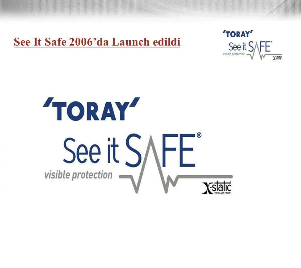 See It Safe 2006'da Launch edildi