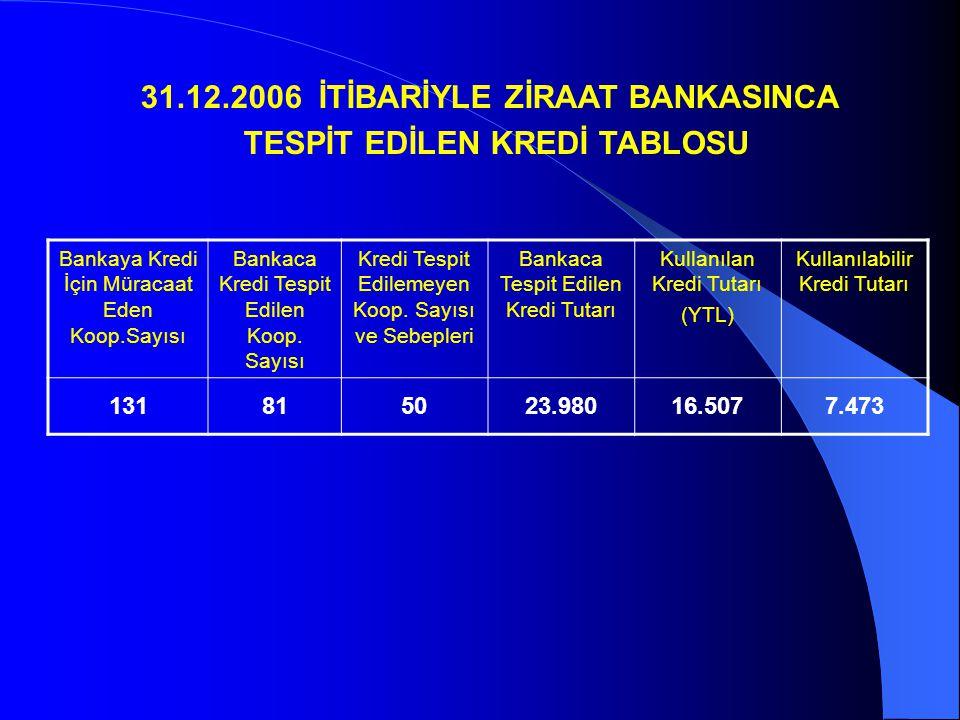 31.12.2006 İTİBARİYLE ZİRAAT BANKASINCA TESPİT EDİLEN KREDİ TABLOSU
