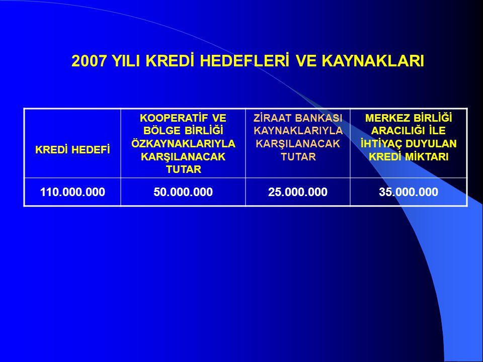 2007 YILI KREDİ HEDEFLERİ VE KAYNAKLARI