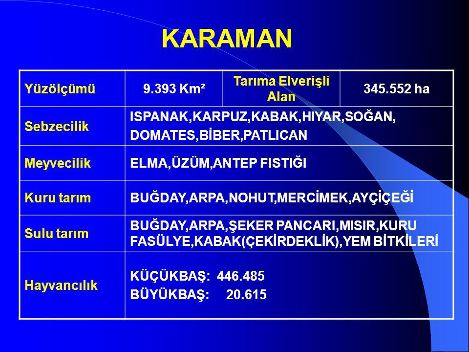 KARAMAN Yüzölçümü 9.393 Km² Tarıma Elverişli Alan 345.552 ha
