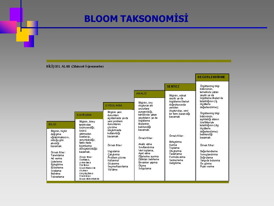 BLOOM TAKSONOMİSİ