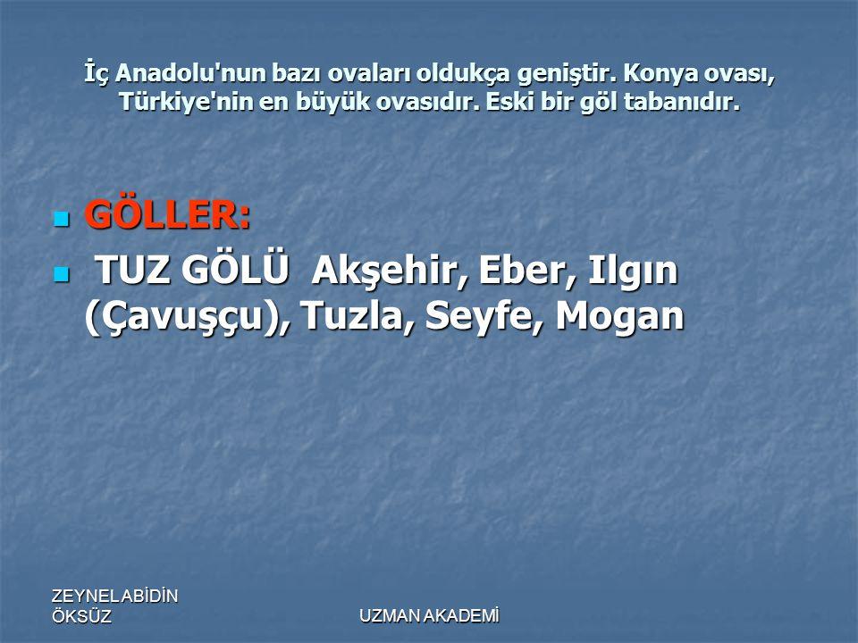 TUZ GÖLÜ Akşehir, Eber, Ilgın (Çavuşçu), Tuzla, Seyfe, Mogan