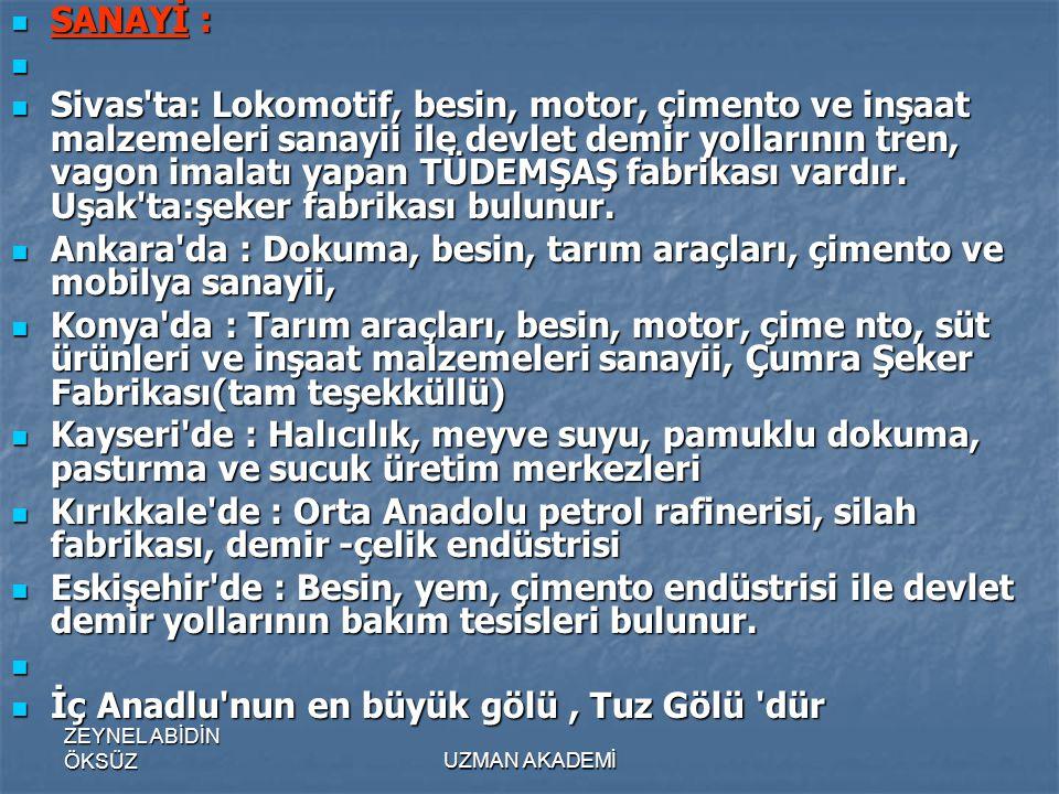 Ankara da : Dokuma, besin, tarım araçları, çimento ve mobilya sanayii,