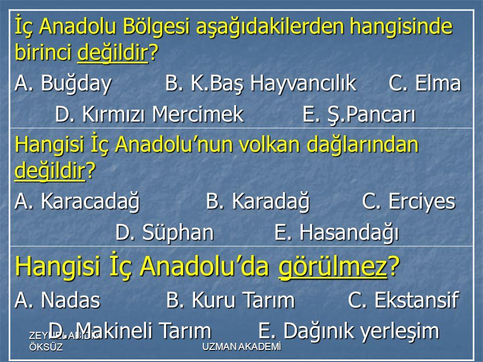 Hangisi İç Anadolu'da görülmez
