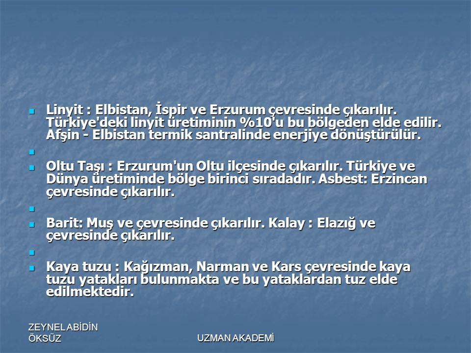 Linyit : Elbistan, İspir ve Erzurum çevresinde çıkarılır