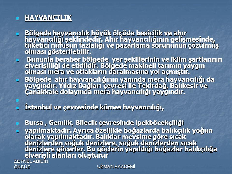 İstanbul ve çevresinde kümes hayvancılığı,