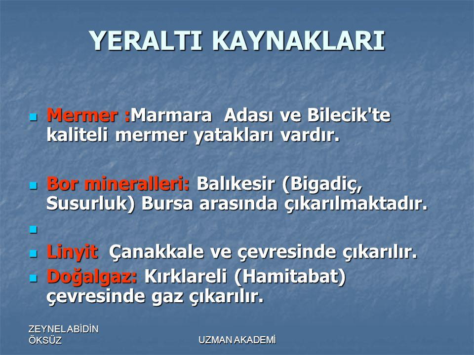 YERALTI KAYNAKLARI Mermer :Marmara Adası ve Bilecik te kaliteli mermer yatakları vardır.