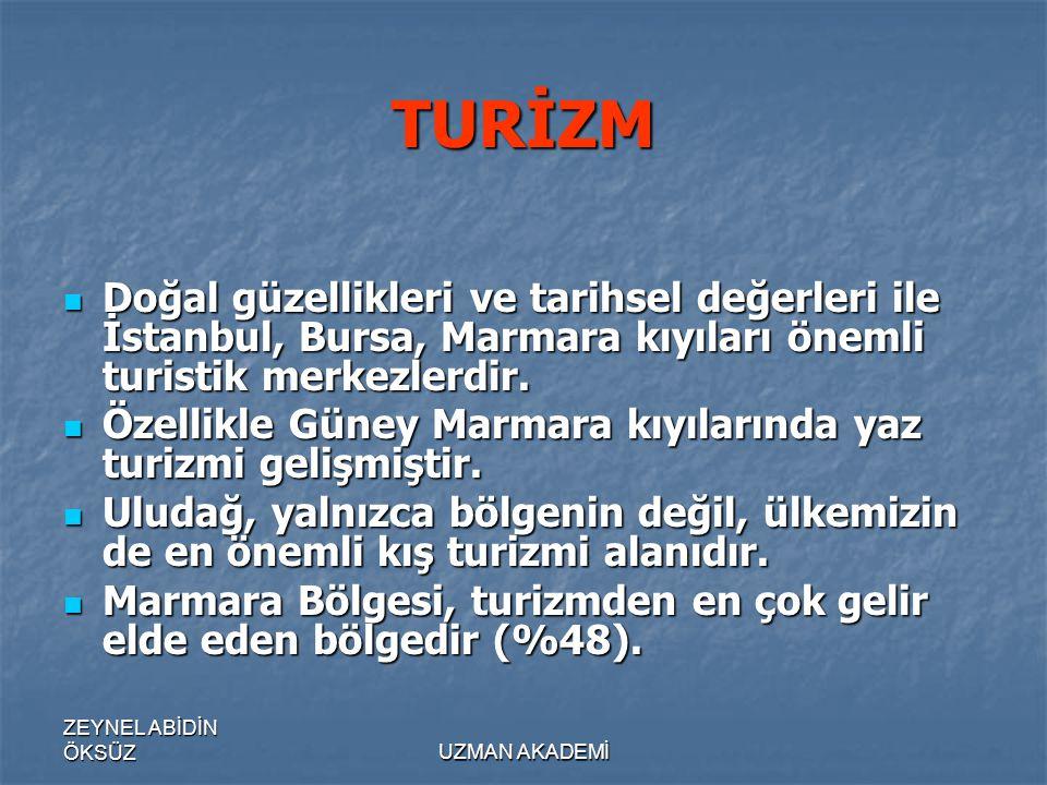 TURİZM Doğal güzellikleri ve tarihsel değerleri ile İstanbul, Bursa, Marmara kıyıları önemli turistik merkezlerdir.