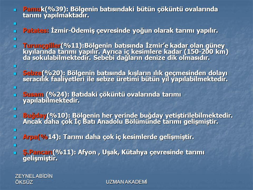 Patates: İzmir-Ödemiş çevresinde yoğun olarak tarımı yapılır.