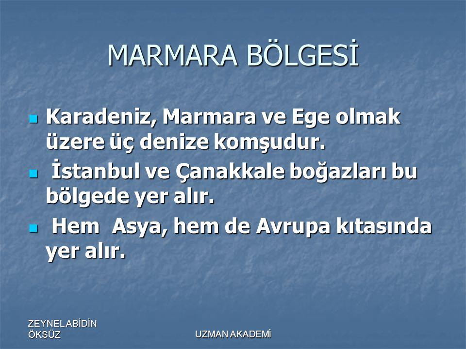 MARMARA BÖLGESİ Karadeniz, Marmara ve Ege olmak üzere üç denize komşudur. İstanbul ve Çanakkale boğazları bu bölgede yer alır.