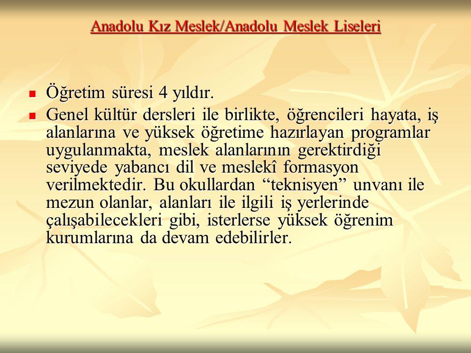 Anadolu Kız Meslek/Anadolu Meslek Liseleri