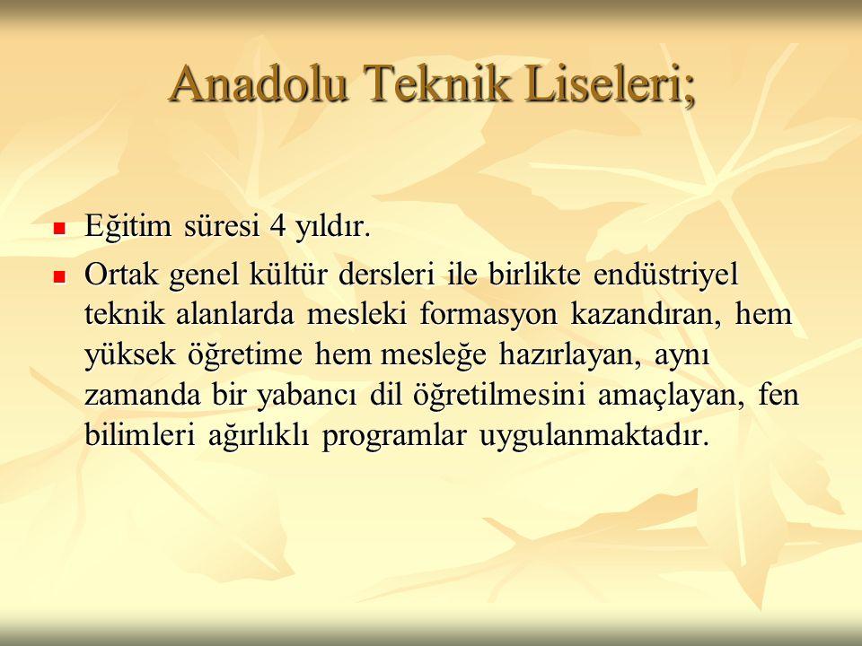 Anadolu Teknik Liseleri;
