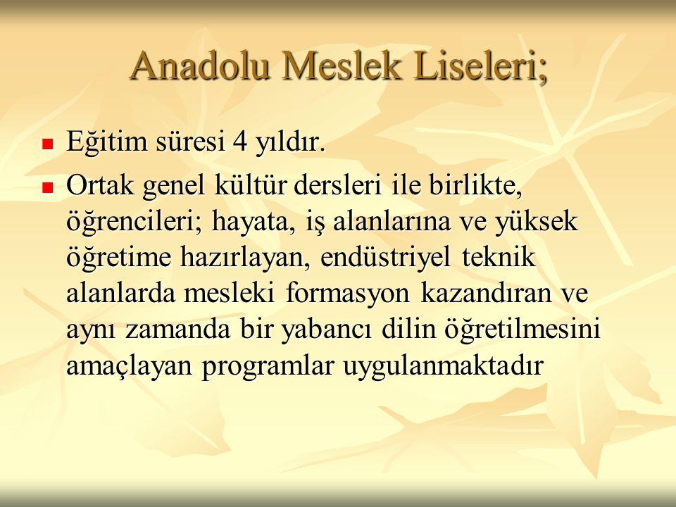 Anadolu Meslek Liseleri;