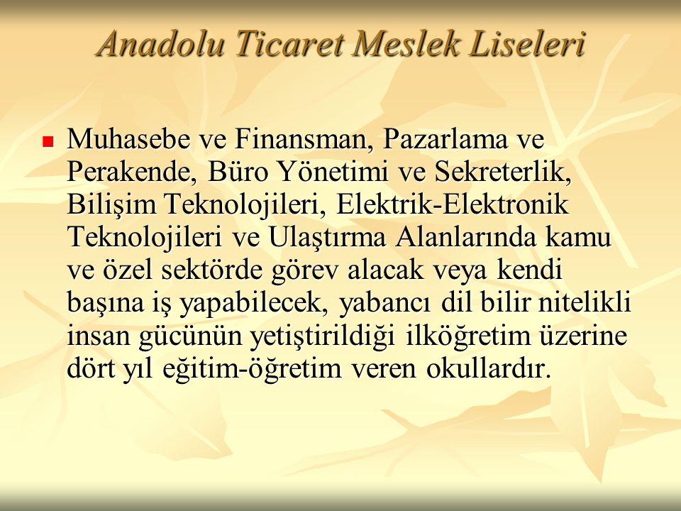 Anadolu Ticaret Meslek Liseleri