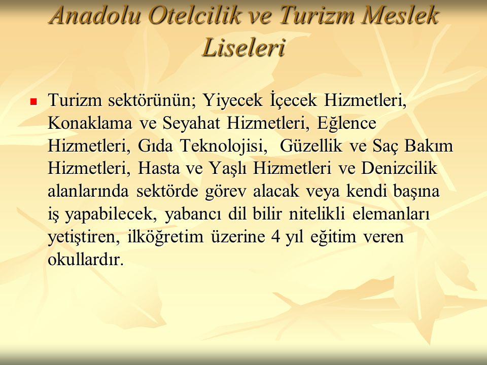 Anadolu Otelcilik ve Turizm Meslek Liseleri