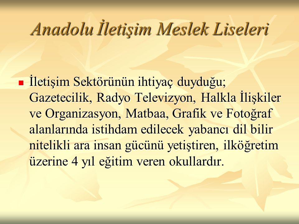 Anadolu İletişim Meslek Liseleri