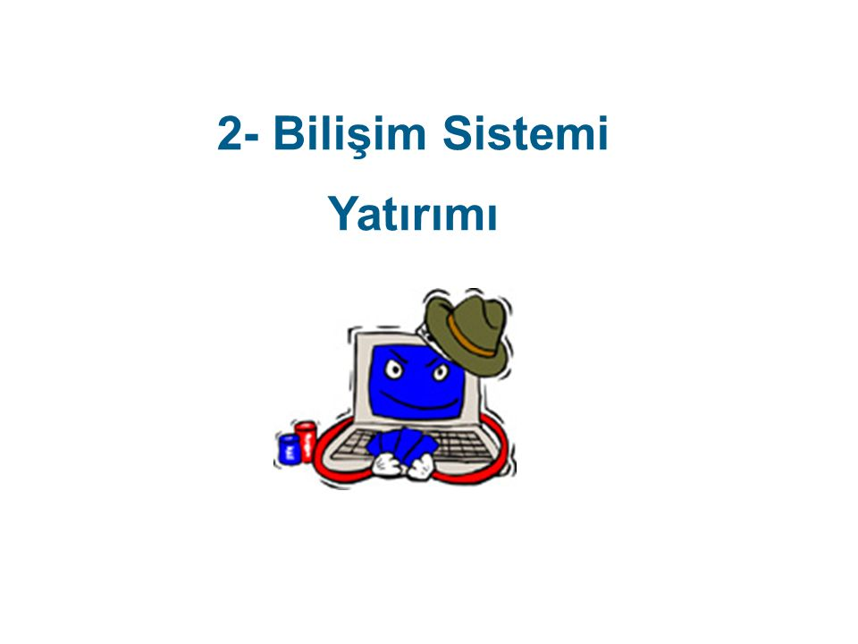 2- Bilişim Sistemi Yatırımı