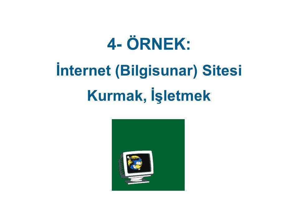 İnternet (Bilgisunar) Sitesi