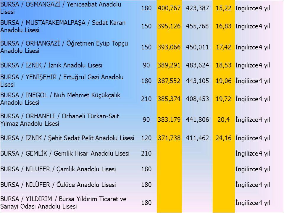 BURSA / OSMANGAZİ / Yeniceabat Anadolu Lisesi