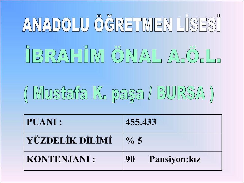 ( Mustafa K. paşa / BURSA )