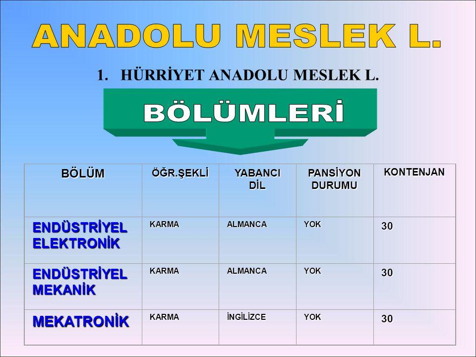 HÜRRİYET ANADOLU MESLEK L.