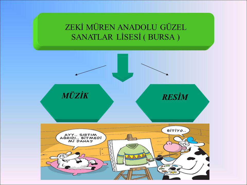 ZEKİ MÜREN ANADOLU GÜZEL SANATLAR LİSESİ ( BURSA )