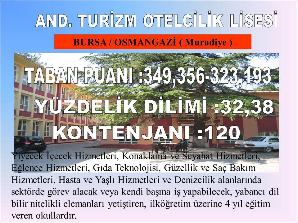 BURSA / OSMANGAZİ ( Muradiye )
