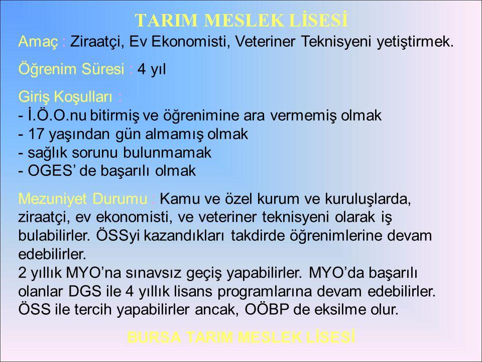 BURSA TARIM MESLEK LİSESİ