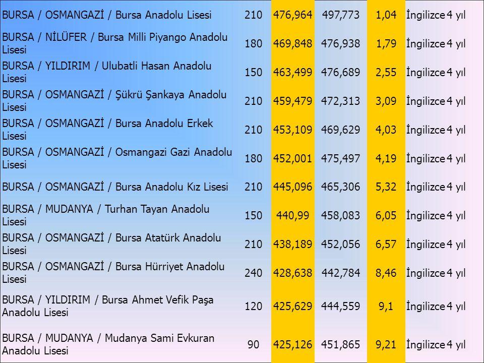 BURSA / OSMANGAZİ / Bursa Anadolu Lisesi