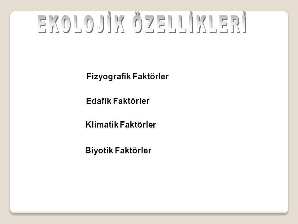Fizyografik Faktörler
