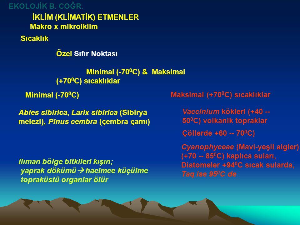 EKOLOJİK B. COĞR. İKLİM (KLİMATİK) ETMENLER. Makro x mikroiklim. Sıcaklık. Özel Sıfır Noktası. Minimal (-700C) & Maksimal (+700C) sıcaklıklar.