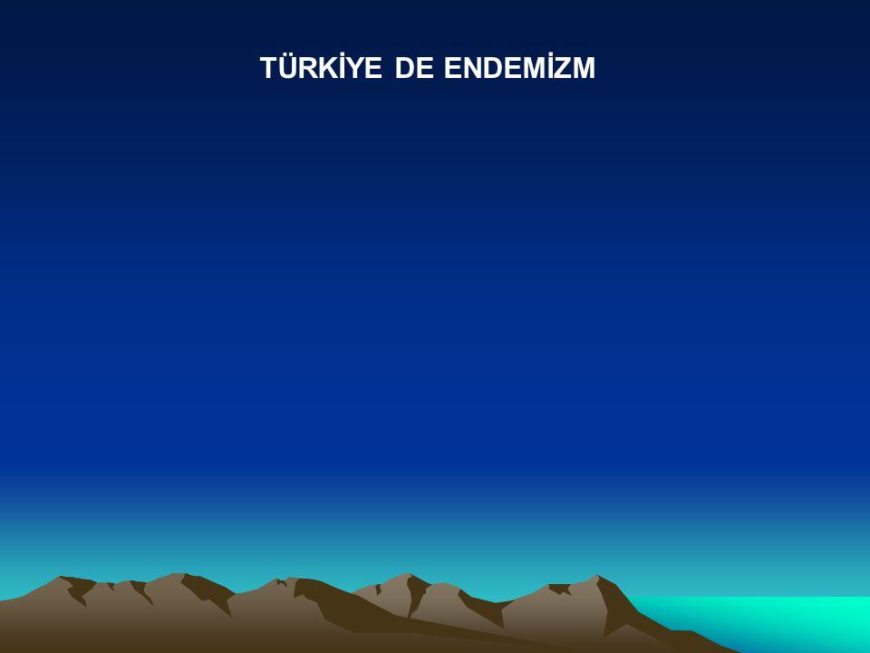 TÜRKİYE DE ENDEMİZM