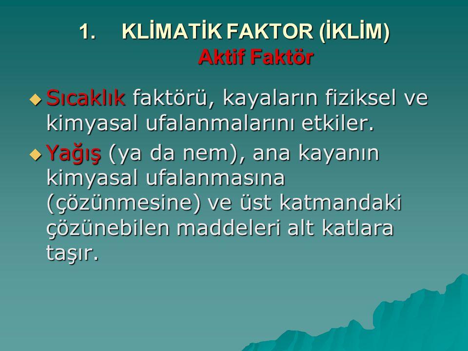 KLİMATİK FAKTOR (İKLİM) Aktif Faktör