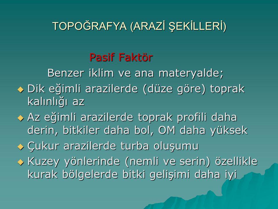 TOPOĞRAFYA (ARAZİ ŞEKİLLERİ)