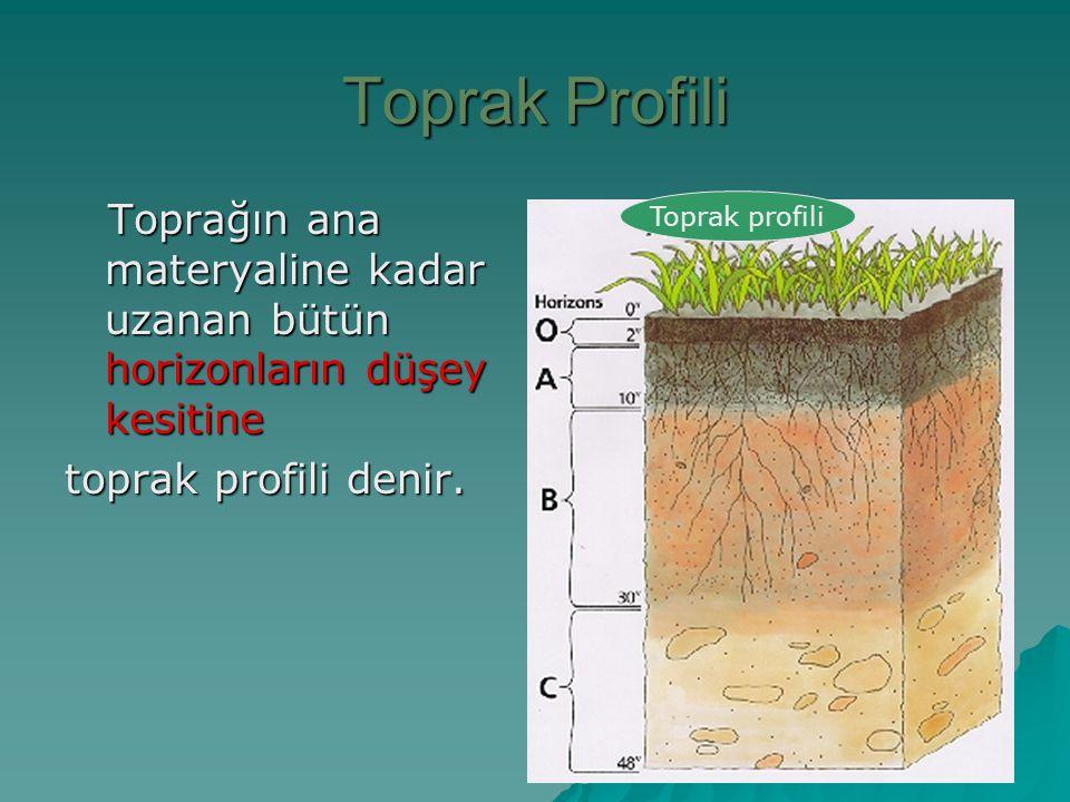 Toprak Profili Toprağın ana materyaline kadar uzanan bütün horizonların düşey kesitine. toprak profili denir.