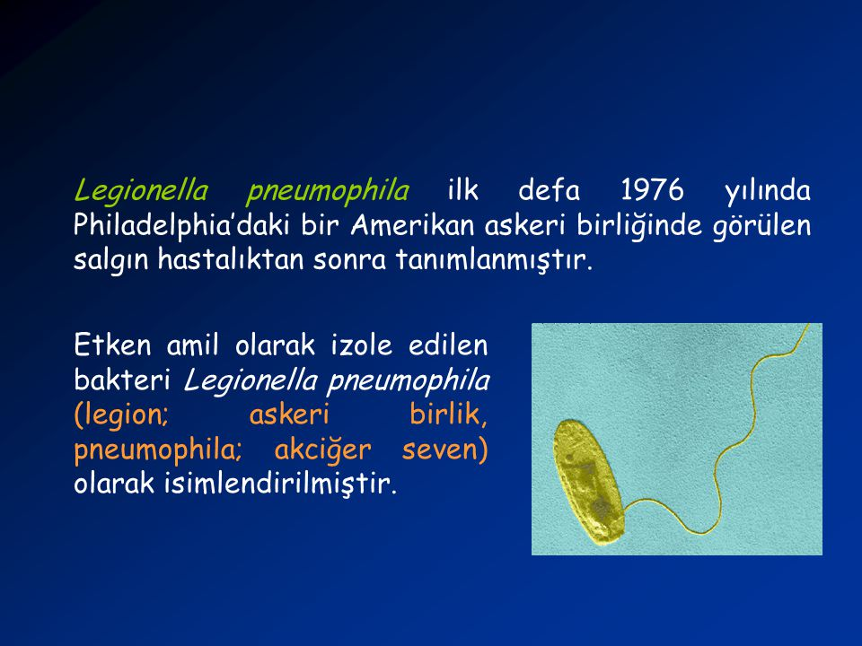 Legionella pneumophila ilk defa 1976 yılında Philadelphia'daki bir Amerikan askeri birliğinde görülen salgın hastalıktan sonra tanımlanmıştır.