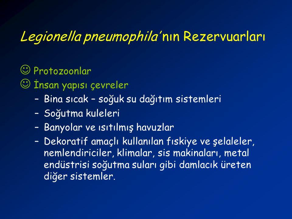 Legionella pneumophila' nın Rezervuarları