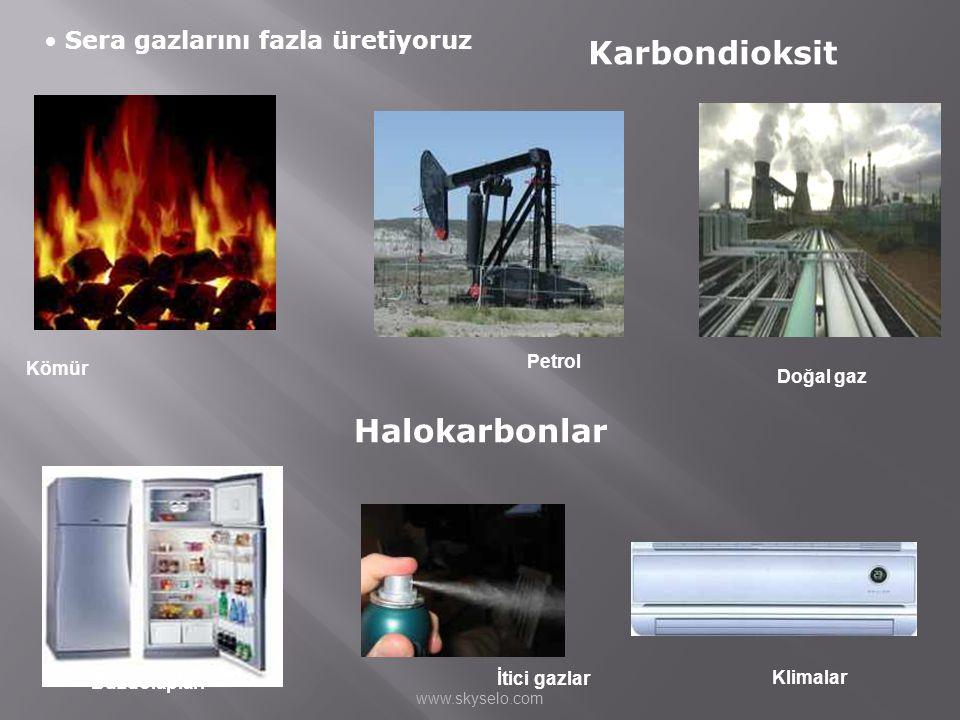 Karbondioksit Halokarbonlar Sera gazlarını fazla üretiyoruz Petrol
