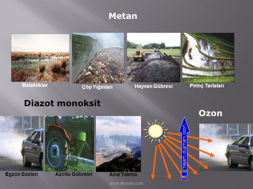 Metan Diazot monoksit Ozon Çöp Yığınları Hayvan Gübresi