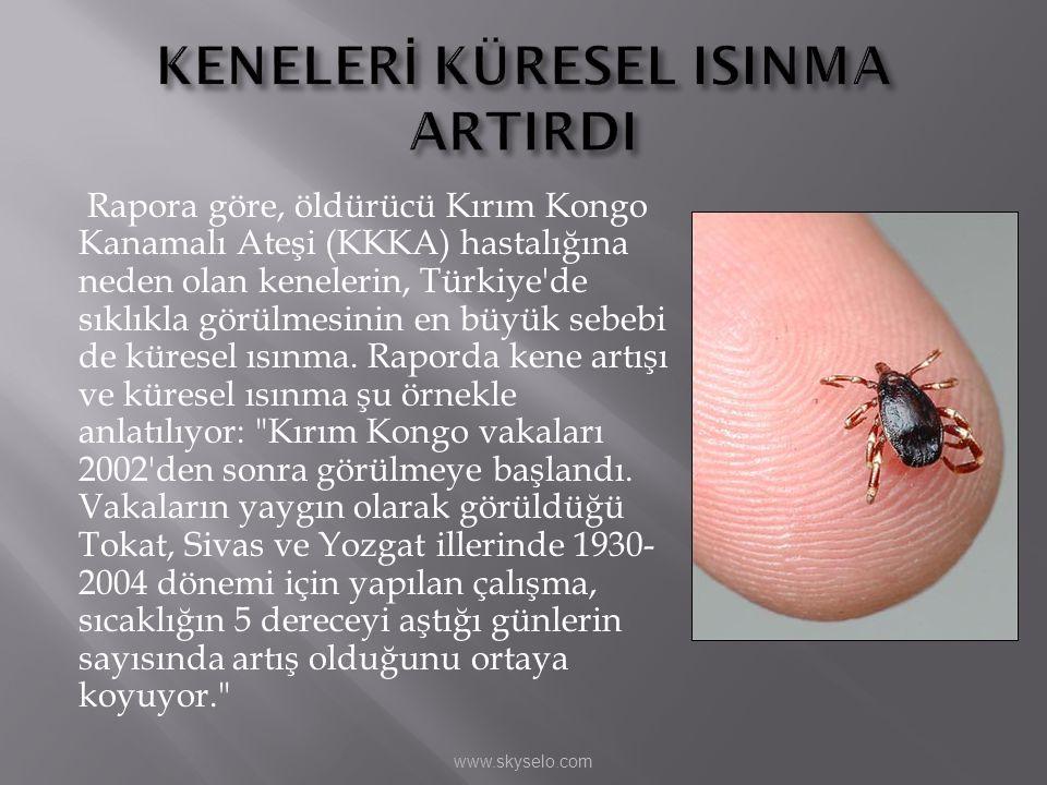 KENELERİ KÜRESEL ISINMA ARTIRDI