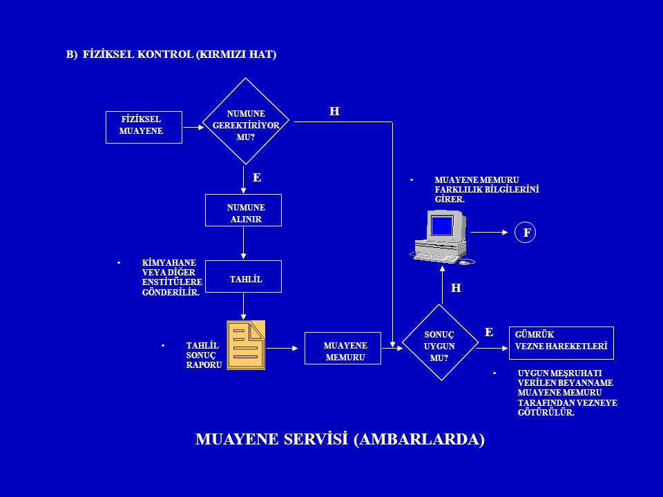 B) FİZİKSEL KONTROL (KIRMIZI HAT) MUAYENE SERVİSİ (AMBARLARDA)