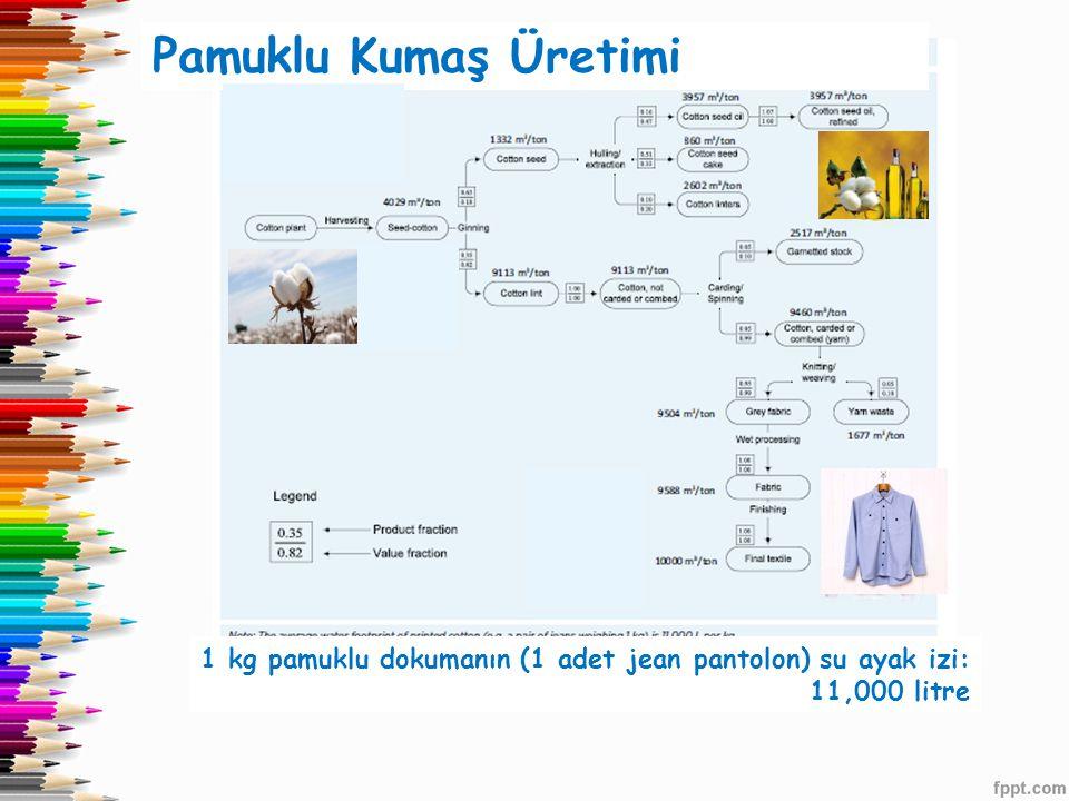 Pamuklu Kumaş Üretimi 1 kg pamuklu dokumanın (1 adet jean pantolon) su ayak izi: 11,000 litre