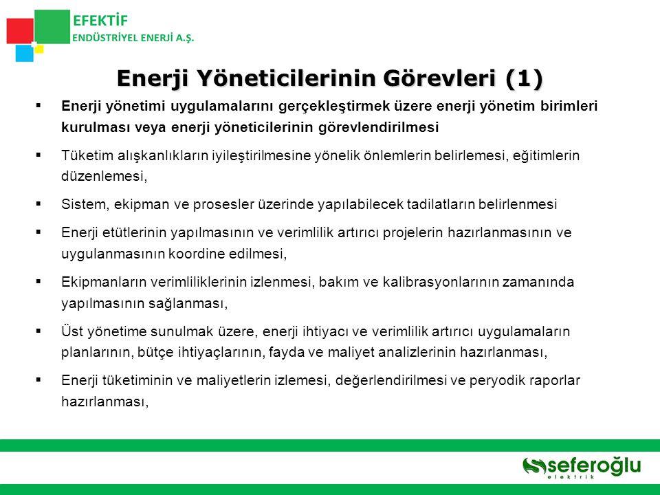 Enerji Yöneticilerinin Görevleri (1)