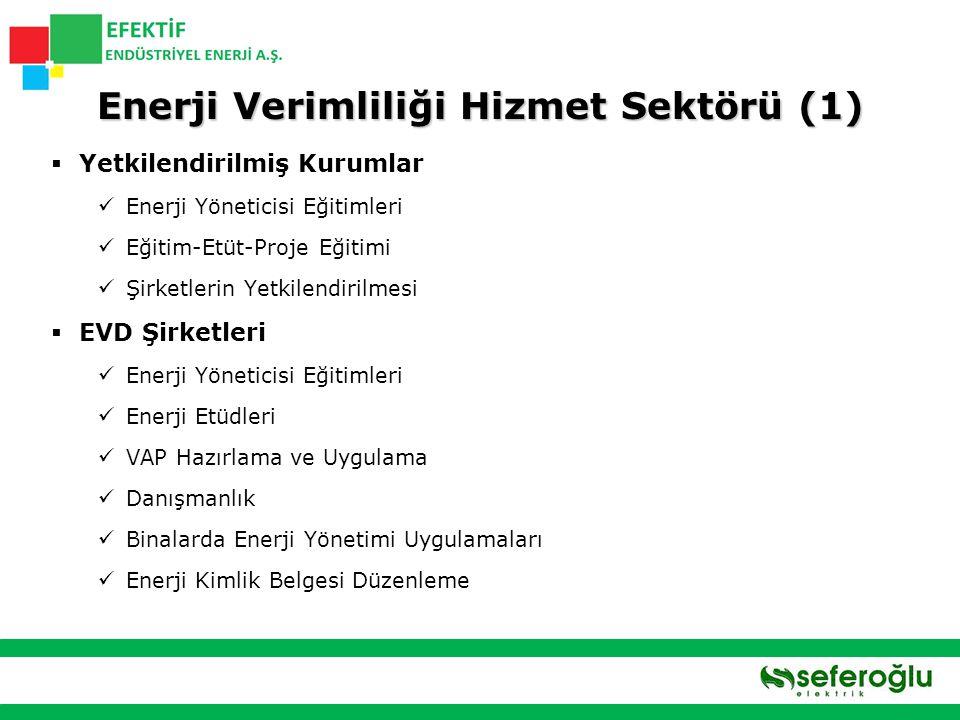 Enerji Verimliliği Hizmet Sektörü (1)