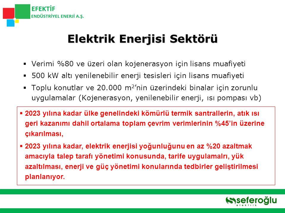 Elektrik Enerjisi Sektörü