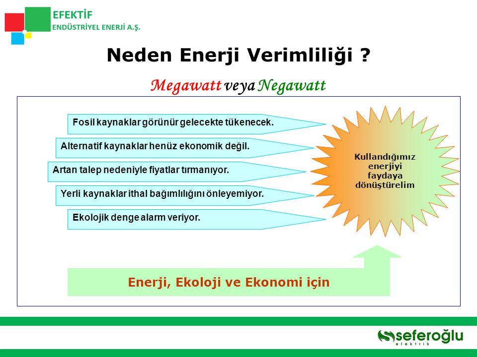 Neden Enerji Verimliliği Megawatt veya Negawatt