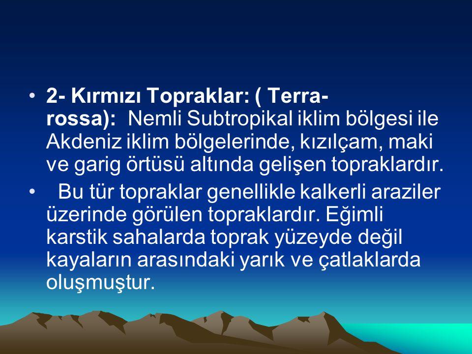 2- Kırmızı Topraklar: ( Terra- rossa): Nemli Subtropikal iklim bölgesi ile Akdeniz iklim bölgelerinde, kızılçam, maki ve garig örtüsü altında gelişen topraklardır.