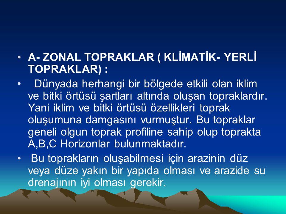 A- ZONAL TOPRAKLAR ( KLİMATİK- YERLİ TOPRAKLAR) :