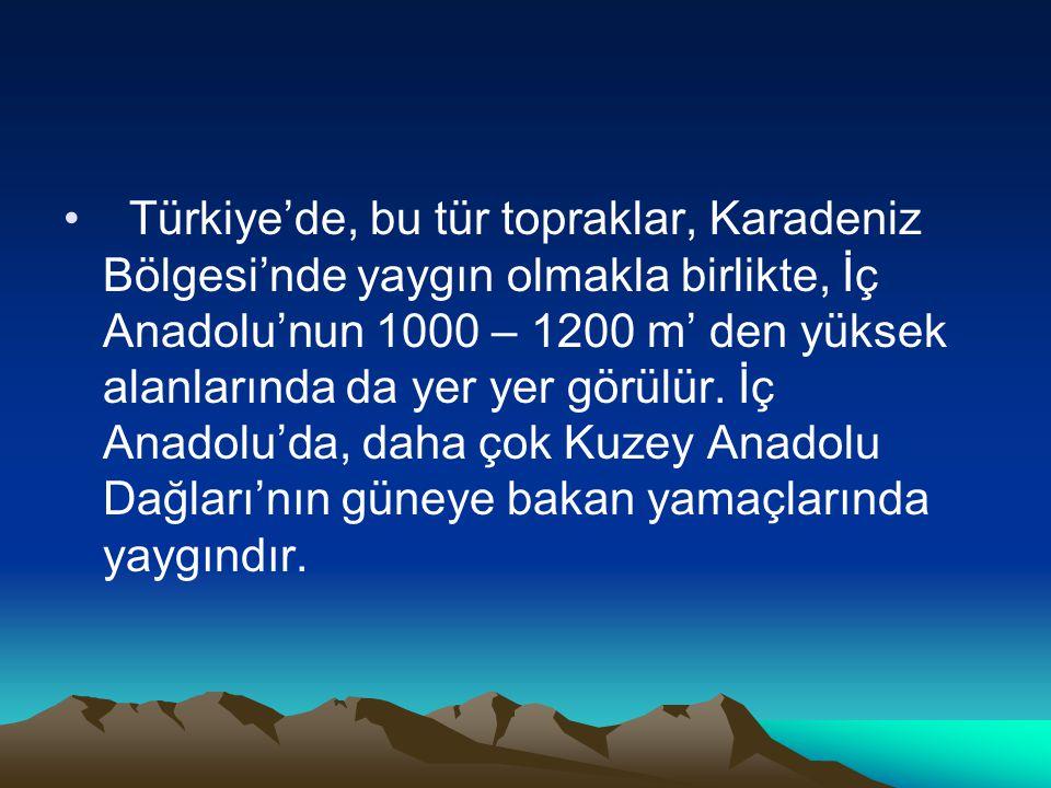 Türkiye'de, bu tür topraklar, Karadeniz Bölgesi'nde yaygın olmakla birlikte, İç Anadolu'nun 1000 – 1200 m' den yüksek alanlarında da yer yer görülür.