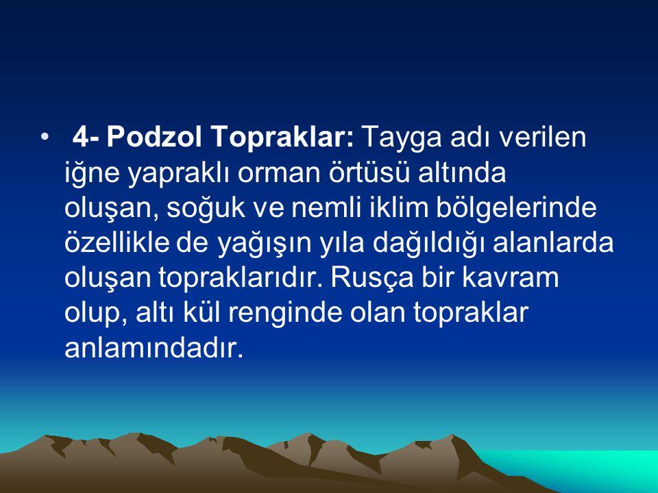 4- Podzol Topraklar: Tayga adı verilen iğne yapraklı orman örtüsü altında oluşan, soğuk ve nemli iklim bölgelerinde özellikle de yağışın yıla dağıldığı alanlarda oluşan topraklarıdır. Rusça bir kavram olup, altı kül renginde olan topraklar anlamındadır.
